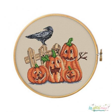 Crazy pumpkins and crow