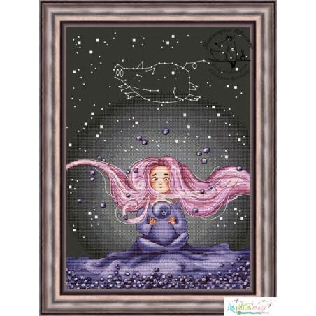 Constellation of blueberry pig