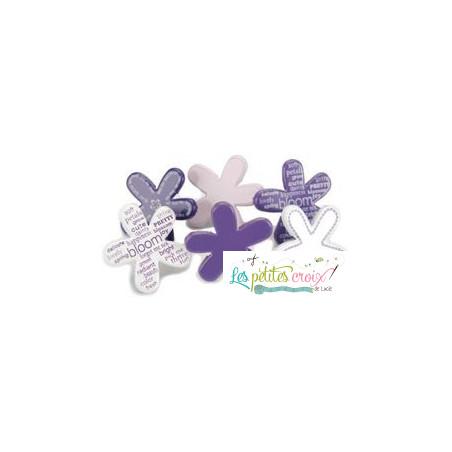 Fleurs violettes et blanches